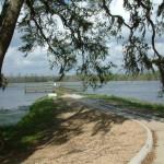 wetland.property