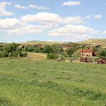 Land, Ranch, Land for Love and Money, Three Things you Need to Know to Own Land, Land owner, Reid Lance Rosenthal
